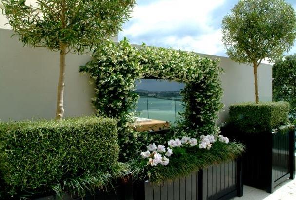 Cilla Cooper landscape design